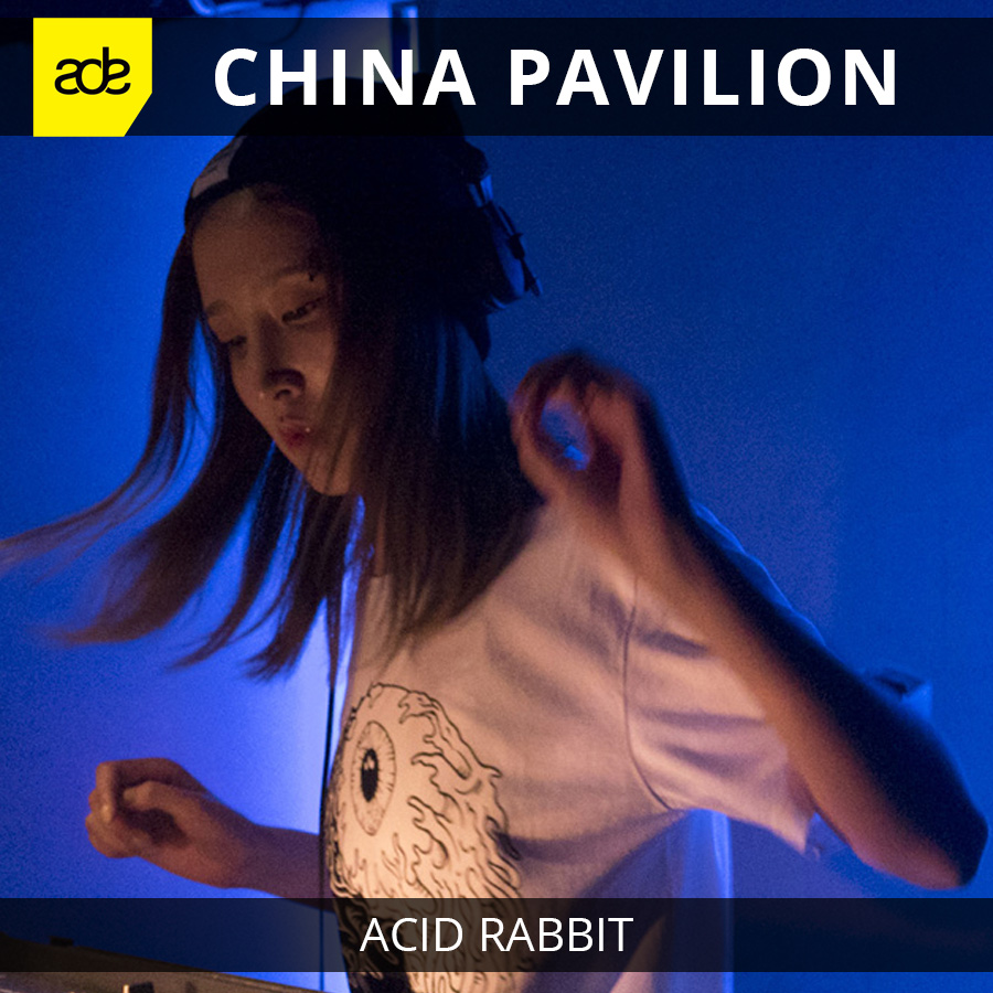 Acid Rabbit